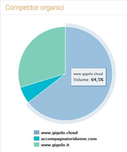 Accompagnatore gigolo Gigolo.Cloud